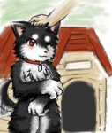 anthro canine cerb0980 chest_tuft collar dog dog_house fur hand_on_head kemono mammal one_eye_closed pixiv red_eyes solo standing tailwag tuft wink   Rating: Safe  Score: 5  User: terminal11  Date: January 29, 2014