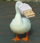 ambiguous_gender animate_inanimate avian bird brick duck edit feral for_a_head low_res object_head outside real shopped solo unknown_artist usb usb_compatible webbed_feet what what_has_science_doneRating: SafeScore: 57User: ktkrDate: March 14, 2011