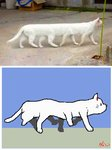 8_legs ambiguous_gender animated domestic_cat felid feline felis feral fur keke_(artist) low_res mammal monotone_body monotone_fur monotone_tail short_playtime solo walking white_ears white_tail