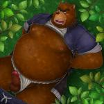anthro balls bear blush clothed clothing colored erection fundoshi japanese_clothing juuichi_mikazuki male mammal morenatsu pants_down partially_clothed penis simple_background solo underwear unknown_artist  Rating: Explicit Score: 3 User: drafan5 Date: April 17, 2016