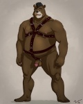 2012 aikho anthro balls barefoot bear belly biceps biped brown_fur cel_shading ear_piercing fur grizzly_bear hair humanoid_penis language male mammal mohawk musclegut muscular muscular_male nipple_piercing nipples nude open_mouth penis piercing signature simple_background slightly_chubby smile solo standing taoren teethRating: ExplicitScore: 1User: nsfw_burrDate: April 20, 2017