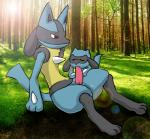 anthro aogami cub duo eyes_closed fellatio lucario male nintendo oral outside penis pokémon red_eyes riolu sex video_games young   Rating: Explicit  Score: 13  User: JGG3  Date: November 02, 2014