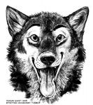 2015 alaskan_malamute anthro blackteagan bust_portrait canid canine canis domestic_dog fur greyscale happy looking_at_viewer male mammal monochrome nicholas_(nicholasdamally) nordic_sled_dog open_mouth portrait simple_background sketch smile solo spitz teeth tongue tongue_out white_background