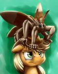 2015 annoyed applejack_(mlp) arthropod cute duo earth_pony equine female feral fluffy_the_bringer_of_darkness friendship_is_magic hat hi_res horse insect mammal moth my_little_pony otakuap pony what_has_magic_done   Rating: Safe  Score: 8  User: Robinebra  Date: May 04, 2015