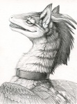 2009 ambiguous_gender bust_portrait collar dragon feathered_dragon feathered_wings feathers feral fur furred_dragon greyscale hibbary mohawk monochrome nude pencil_(artwork) portrait side_view smile solo stripes traditional_media_(artwork) wings