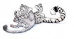 "balls cougar cuddling ebonytigress feline feral fully_sheathed leopard lying male male/male mammal on_back pawpads paws plain_background scar sheath snow_leopard white_background  Rating: Explicit Score: 9 User: Vinea Date: June 23, 2015"""