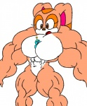 abs biceps big_breasts big_muscles blue_eyes breasts brown_eyes chao couple cream_the_rabbit female hyper hyper_muscles muscles muscular_female navel nude plain_background sega sonic_(series) what white_background   Rating: Questionable  Score: 0  User: Mysterious_Fox  Date: December 29, 2010