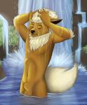 2015 alternate_color anthro balls bathing belly_piercing brown_fur claws delilittle eeveelution eyes_closed flareon fully_sheathed fur grass male nintendo nude outside pokémon river rock sheath shiny_pokémon solo struve video_games water waterfall wet white_fur  Rating: Explicit Score: 5 User: TheGreatWolfgang Date: May 12, 2015