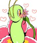 <3 ambiguous_gender antennae blush cute eyelashes feral flower kiriya meganium nintendo one_eye_closed plant pokémon pokémon_(species) simple_background smile solo video_games wink yellow_eyesRating: SafeScore: 7User: DeltaFlameDate: September 09, 2015