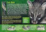 ambiguous_gender english_text feral fur genet looking_at_viewer mammal open_mouth sharp_teeth spots standing teeth text   Rating: Safe  Score: -1  User: Åndensvampyr  Date: April 24, 2014