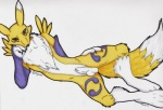 anthro balls blue_eyes canine clothing collar digimon elbow_gloves fox fur gloves kotto_(artist) looking_at_viewer male mammal markings nude penis purple_clothing renamon sheath simple_background solo white_background wiskar yellow_fur yin_yang ©  Rating: Explicit Score: 5 User: Pinki-Husky Date: October 30, 2012