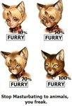 ambiguous_gender animal_ears anthro cat collar comparison feline feral humanoid mammal po-ju solo transformation   Rating: Questionable  Score: -10  User: msc  Date: April 01, 2007