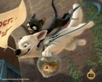 balls bolt bolt_(film) canine cat disney dog edit feline female feral group male mammal mittens_(bolt) penis rhino_(bolt) sheath shopped  Rating: Explicit Score: 5 User: tempo321 Date: November 03, 2009