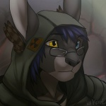 black_nose blue_hair eyewear glasses hair heterochromia hood hoodie koul lagomorph male mammal rabbit solo   Rating: Safe  Score: 20  User: Hardstyle_Chris  Date: July 26, 2013