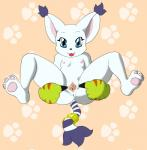 anthro anus breasts digimon feline female fur gatomon killy00 mammal pawpads paws pussy solo spread_pussy spreading white_fur  Rating: Explicit Score: 8 User: slyroon Date: November 12, 2015