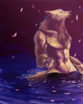 canine flower_petals male solo topless water wbcat wolf   Rating: Safe  Score: 8  User: furmann  Date: December 04, 2012