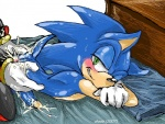 2007 all_fours anal anal_penetration anthro anus bed blush butt butt_grab cum cum_in_ass cum_inside cumshot doggystyle duo from_behind hand_on_butt hedgehog inside male male/male mammal on_bed orgasm penetration penis sex shade_(artist) shadow_the_hedgehog sonic_(series) sonic_the_hedgehog sweat   Rating: Explicit  Score: 4  User: RollerCoasterViper59  Date: July 12, 2011