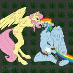 anthro bdsm bit_gag bondage bound drugs duo equine female female/female fluttershy_(mlp) forced_drug_use friendship_is_magic gag hair hi_res long_hair mammal marijuana my_little_pony nipple_piercing nipples pegasus piercing poisindoodles rainbow_dash_(mlp) smoking wings   Rating: Questionable  Score: 1  User: Sinwolf13  Date: May 04, 2015
