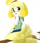 animal_crossing anthro canine clothing dog fart fart_fetish female freefallen fur isabelle_(animal_crossing) mammal nintendo shih_tzu solo video_games  Rating: Explicit Score: -1 User: fulldiapers Date: October 07, 2014