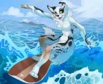 2015 anthro breasts canine demicoeur dog female mammal nude sea solo surfboard surfing water   Rating: Questionable  Score: 17  User: Numeroth  Date: March 26, 2015