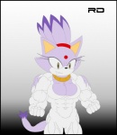 abs biceps blaze_the_cat breasts cat claws clothing feline female flexing muscles muscular_female sega smile solo sonic_(series) teeth torn_clothing unknown_artist   Rating: Questionable  Score: -1  User: misspriss  Date: February 09, 2013