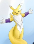 ambiguous_gender anthro canine clothing digimon fox fur gloves hug looking_at_viewer mammal renamon simple_background solo wiskar yellow_fur  Rating: Safe Score: 2 User: Pinki-Husky Date: January 29, 2013