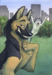 ambiguous_gender brown_eyes building canine dog duo feral german_shepherd humor husky idess mammal moon_moon outside park photobomb pose selfie smile   Rating: Safe  Score: 35  User: SilverGhost  Date: October 26, 2014