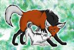anatomically_correct bent_over blue_eyes bow canine digital_media_(artwork) duo female feral flirting fox green_eyes male mammal maned maned_wolf paws quadruped resper simple_background suggestive tongue tongue_out wolf  Rating: Questionable Score: 3 User: pakoid Date: February 10, 2016