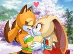 2014 <3 anthro cream_the_rabbit cute duo female lagomorph mammal marine_the_raccoon pauuhanthothecat rabbit raccoon sega sonic_(series)   Rating: Safe  Score: 11  User: Robinebra  Date: December 19, 2014