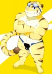 beat_you_(artist) biceps big_muscles blue_eyes clothing crossed_arms eyewear feline fur goggles grin looking_at_viewer male mammal markings morenatsu muscles nipples pecs plain_background pose solo speedo standing stripes swimsuit tiger torahiko_ooshima yellow_background   Rating: Questionable  Score: 6  User: BlackBoltEX  Date: October 05, 2013