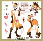 anthro canine fox h-e-l-y hale. invalid_tag mammal model_sheet ramaelfox reference-sheet sheet_(disambiguation)