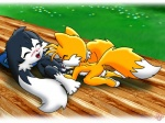 anthro balls black_fur blush canine cub cum duo eyes_closed fellatio fox fur grass klonoa klonoa_(series) long_ears male male/male mammal miles_prower multiple_tails nude oral orange_fur outside penis pillow sex sonic_(series) twotails young   Rating: Explicit  Score: 3  User: Kitsu~  Date: December 31, 2008