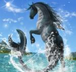 2017 ambiguous_gender blue_eyes blue_sky cloud detailed_background digital_media_(artwork) equine feral fin fish grey_body grey_mane grey_tail hi_res horse hybrid island lens_flare long_tail looking_at_viewer looking_back mammal mane marine mountain on_hind_legs partially_submerged perspective quadruped rear_view rufciu sea shark signature sky snout solo sun tail_fin thick_tail waterRating: SafeScore: 4User: Cash_BanoocaDate: July 09, 2017