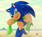 2016 anthro clothing fur gloves hedgehog male mammal myly14 solo sonic_(series) sonic_the_hedgehog summer