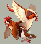 ambiguous_gender avian beak feral flying group nintendo pidgeot pidgeotto pidgey plain_background pokémon spacesmilodon standing talons video_games wings   Rating: Safe  Score: 4  User: UNBERIEVABRE!  Date: July 08, 2014