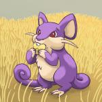 ambiguous_gender corn eating feral field food mammal nintendo outside pokémon rattata red_eyes rikkoshaye rodent solo standing video_games whiskers