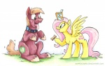 2015 begging big_macintosh_(mlp) blue_eyes box collar dog_biscuit duo equine female feral fluttershy_(mlp) friendship_is_magic grass green_eyes hair horse male mammal my_little_pony pegasus pink_hair pony sitting sophiecabra tongue tongue_out wings   Rating: Safe  Score: 6  User: 2DUK  Date: January 31, 2015