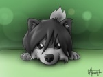 2012 4:3 ambiguous_gender arrwulf canid canine canis cub dark_grey_hair feral fur grey_fur grey_hair hair looking_at_viewer mammal playful solo wolf young