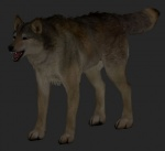 anatomically_correct canine fully_sheathed male mammal sheath wolf   Rating: Questionable  Score: 2  User: w0lf  Date: April 27, 2015