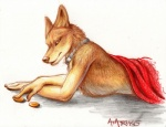 amon canine collar jackal male rukis solo topless   Rating: Safe  Score: 12  User: furryanon  Date: August 14, 2013