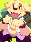 anthro begging canine ch3cooh1231 cusith cute dog male mammal obese overweight simple_background slightly_chubby solo tokyo_afterschool_summonersRating: SafeScore: 5User: rakushunDate: January 30, 2017
