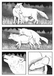 artic1010 bite canine comic devious duo ears_back female feral feral_on_feral fur gender_transformation greyscale internal knot looking_pleasured male male/female mamal mammal monochrome paws penetration penis post_transformation sex smile transformation vaginal vaginal_penetration wolf   Rating: Explicit  Score: 9  User: Rowedsta123-1  Date: November 24, 2014