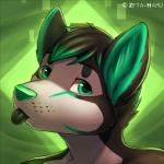 2014 abstract_background anthro black_fur black_hair bust_portrait canine cute dog embryll freckles fur green_background green_eyes green_fur green_hair green_nose green_theme hair horn husky icon looking_at_viewer male mammal multicolored_hair portrait simple_background solo tongue tongue_out two_tone_hair zeta-haru