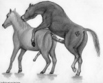 anal anal_penetration animal_genitalia anus black_and_white darkmare duo equine erection feral feral_on_feral from_behind hooves horse horsecock male male/male mammal monochrome penetration penis sex sketch  Rating: Explicit Score: 15 User: Pasiphaë Date: October 07, 2015