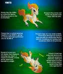 brown_eyes cream_fur cute dachimotsu equine feral fire fur grass hooves horse mammal nintendo pokémon pony ponyta quadruped rolling scary simple_background text tongue video_games   Rating: Safe  Score: 4  User: Dachimotsu  Date: May 03, 2015