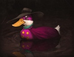 2010 ambiguous_gender avian beak bird button_(fastener) cape clothed clothing cosplay darkwing_duck disney duck eyewear feral feralized floating hat hero mallard mask mike_mitchell monocle parody reflection solo water what