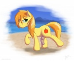 beach braeburn_(mlp) cutie_mark earth_pony equine feral flaccid friendship_is_magic hi_res horse male mammal my_little_pony outside penis pony seaside skipsy sky solo wet