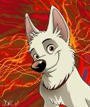 <3 abstract_background bolt bolt_(film) brown_eyes canine collar cute digital_media_(artwork) disney dog feral fur german_shepherd looking_at_viewer male mammal silverdeni simple_background smile solo white_fur white_shepherd  Rating: Safe Score: 10 User: lertcon2014 Date: January 04, 2015
