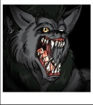 2009 anthro canine fur hair male mammal muscles rex_equinox were werewolf wolf   Rating: Questionable  Score: 0  User: MJ1988  Date: February 28, 2013