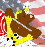 anthro avian bald_eagle bird blue_eyes breasts eagle edit female flag nipples pussy solo stars_and_stripes talons united_states_of_america zp92   Rating: Explicit  Score: 17  User: mogar78  Date: April 14, 2014